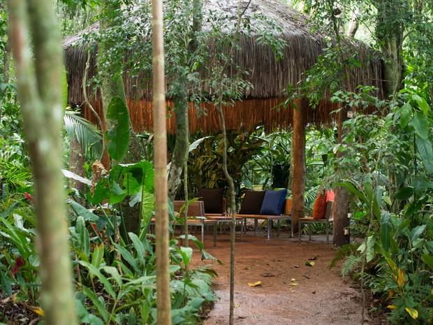 Espaços foram construídos em meio a clareiras na selva; segundo a direção, não foram derrubadas árvores, apenas ocupados os ambientes disponíveis (Foto: Parque das Aves / Divulgação)