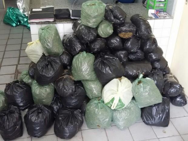 A polícia apreendeu 80 kg de maconha na manhã deste sábado (20) após um veículo capotar na BR-232 (Foto: Divulgação/PM)