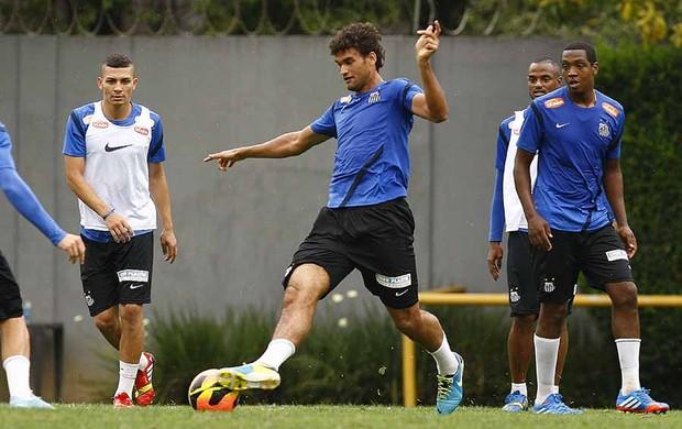 Willian José, atacante do Santos (Foto: Ricardo Saibun/Divulgação Santos FC)