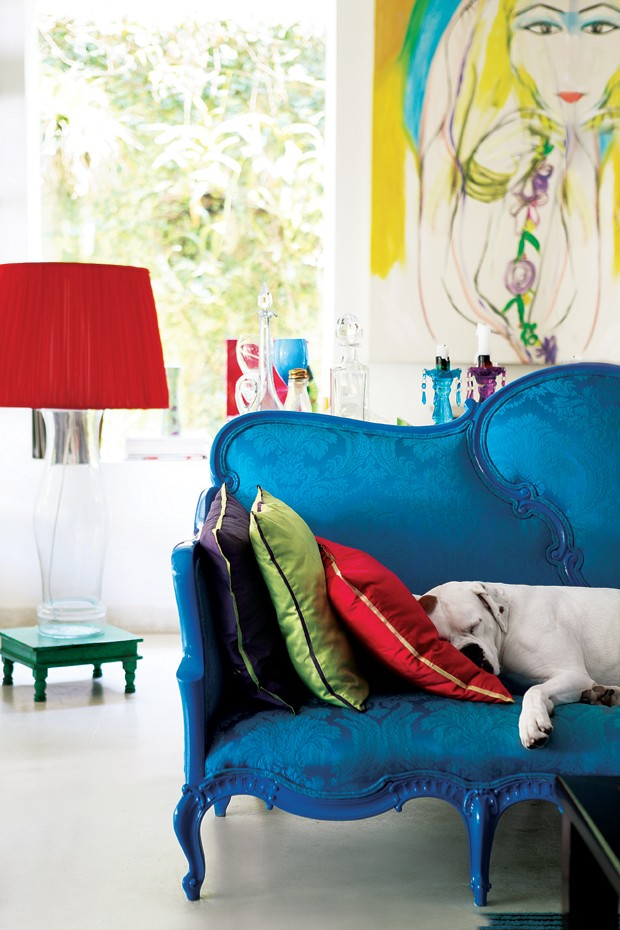 cachorro-sofa (Foto: Casa e Jardim)