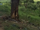 Acidente de carro deixa três pessoas mortas na rodovia PE-90 em Vertentes
