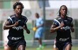 Zé Roberto e Arouca treinam e são relacionados; veja lista (Cesar Greco/Ag Palmeiras/Divulgação)