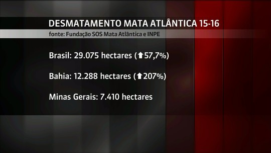 Monitoramento aponta aumento de 57,7% no desmatamento da Mata Atlântica