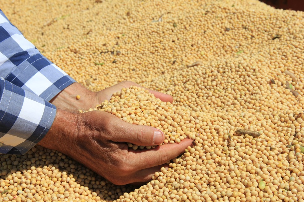 Muitos agricultores têm preferido a cautela com a supersafra (Foto: André Bacarin/Cocamar)