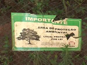 Local desmatado é Área de Proteção Ambiental (APA) em Salvador (Foto: Imagens / TV Bahia)