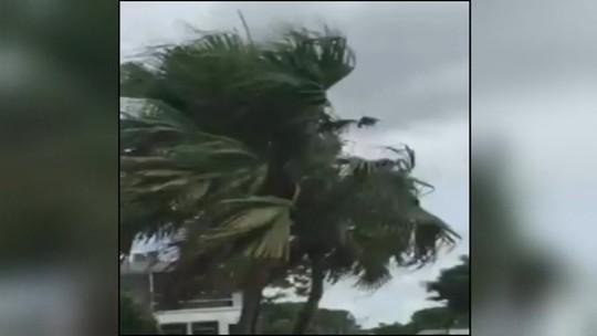 Brasileira deixa casa com família após aviso de furacão na Flórida