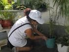 Agentes realizam mutirão contra Aedes aegypti em Casimiro, no RJ