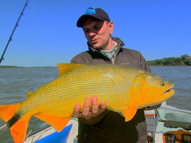 pescaria_dourado (Foto: Wilson Aiello/TG)