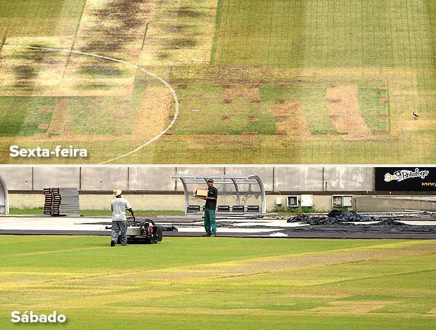 montagem gramado Engenhão (Foto: Editoria de Arte / Globoesporte.com)