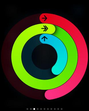 Atividades físicas são compiladas numa 'roda de exercícios', com metas diárias a serem batidas (Foto: Reprodução)