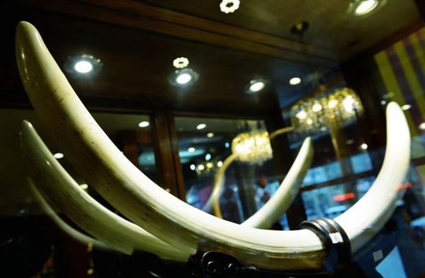 Escultura de marfim é vista em loja em Hangzhou, na China, nesta sexta-feira (27); país proibiu importação do item por um ano (Foto: AFP)