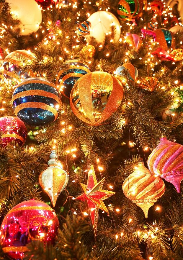 Inove na ceia de Natal com três receitas de cordeiro (Foto: Thinkstock)