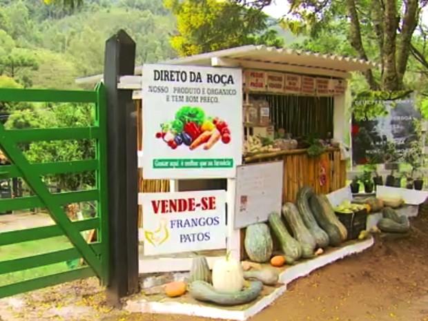Barraca sem vendedor atrai a atenção dos clientes em Delfim Moreira (MG) (Foto: Reprodução EPTV/Erlei Peixoto)