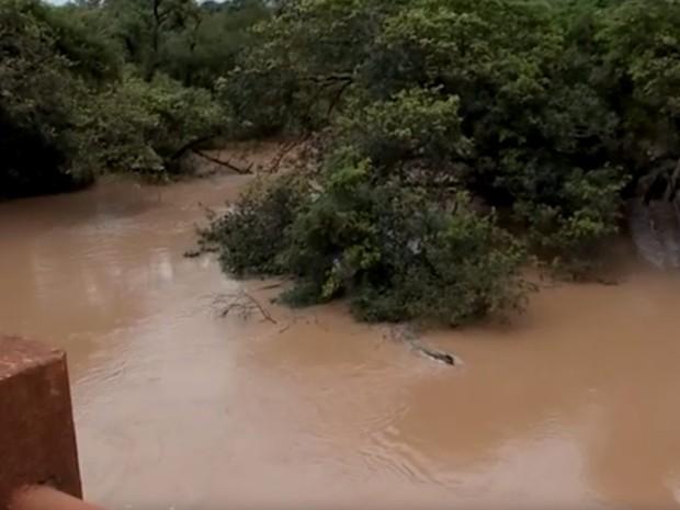 Rio próximo a Valentim Gentil teve cheia nos últimos dias (Foto: Reprodução/TV TEM)