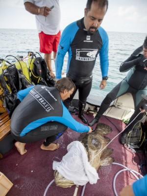 Peixe pode chegar a pesar 400 quilos (Fot Athila Bertoncini/Divulgação)