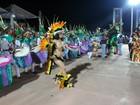 Boi-bumbá Malhadinho se apresenta no 'Duelo na Fronteira' em Guajará