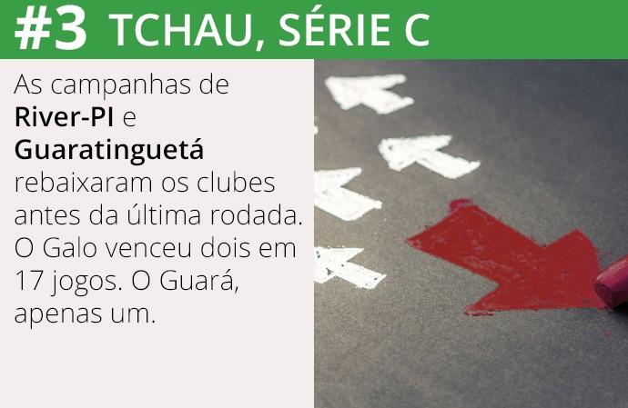 Série C do Brasileirão  3 (Foto: Infoesporte)