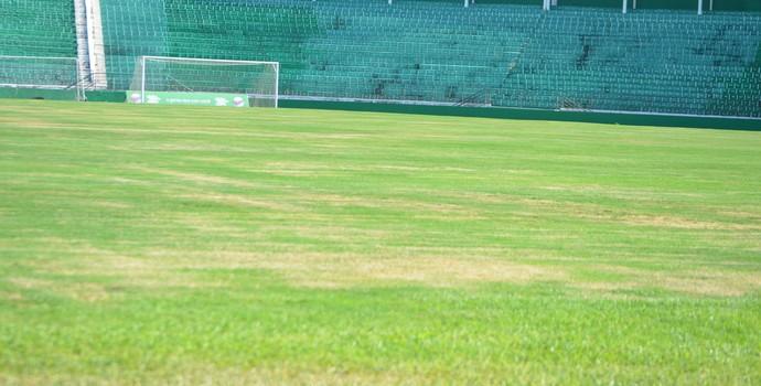 Brinco de Ouro estádio Guarani (Foto: Murilo Borges)