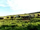 Vilhena, RO, terá mutirão para regularizar propriedades rurais