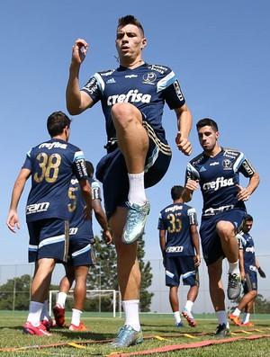 Moisés Palmeiras (Foto: Cesar Greco / Ag. Palmeiras)