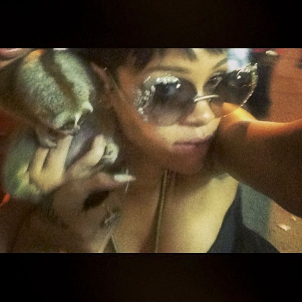 Na Tailândia, Rihanha publicou um selfie com um lóris, protegido no país. A foto fez dois suspeitos de contrabando de animais serem presos. (Foto: reprodução)