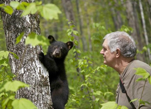 Ben Kilham junto com filhote de urso que recebeu cuidados, no estado de New Hampshire (Foto: AP)