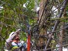 Ação desativa 200 ligações de luz clandestinas na Z. Oeste de Manaus