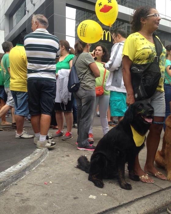 Manifestante leva cão com focinho pintado de verde e amarelo para a manifestação na Avenida Paulista, em São Paulo (Foto: Thais Lazzeri/ÉPOCA)