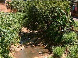Esgoto a céu aberto no Parque Oziel em Campinas (Foto: Reprodução/ EPTV)