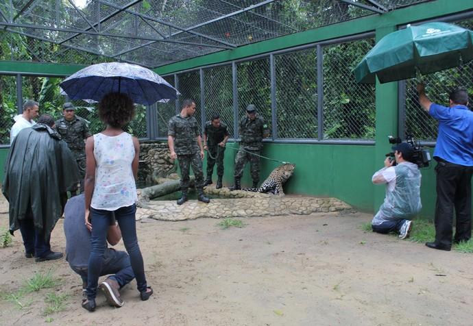 Equipe do 'Zapp' mostra bastidores do 'Mais Você' em Manaus (Foto: Katiúscia Monteiro/ Rede Amazônica)