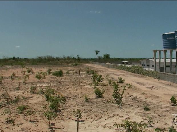 Centro de Hemodiálise de Chapadinha seria construído nessa área, mas obra sequer começou (Foto: Reprodução/TV Mirante)
