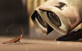 Solitário, robô divide o local apenas com uma barata (Foto: Divulgação / Reprodução)