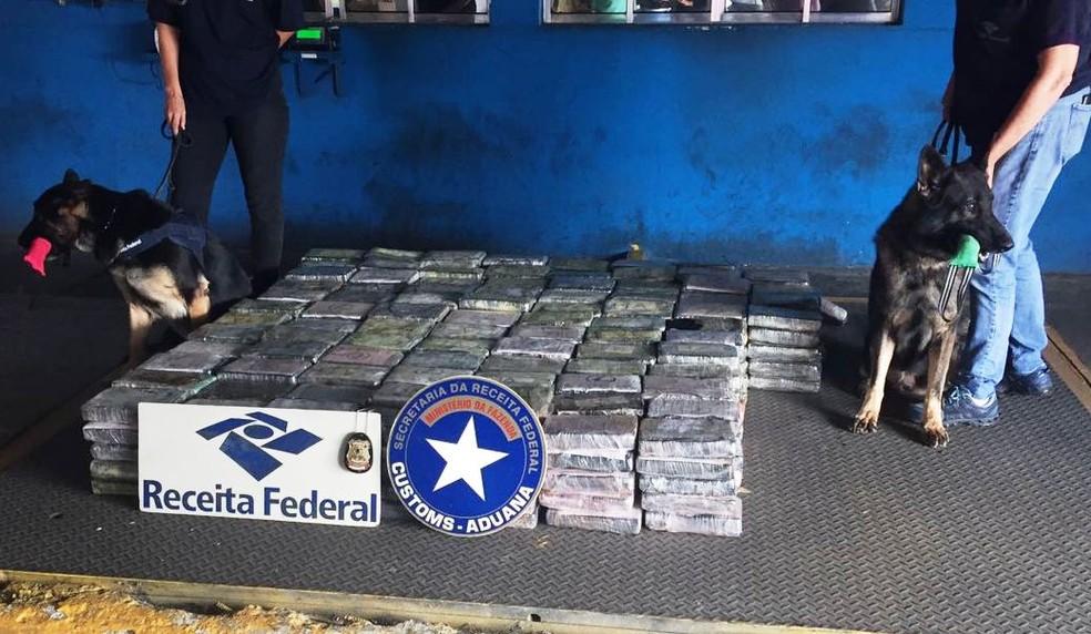 Mais de meia tonelada de cocaína é interceptada no Porto de Santos, SP | SP / Santos e Região | G1