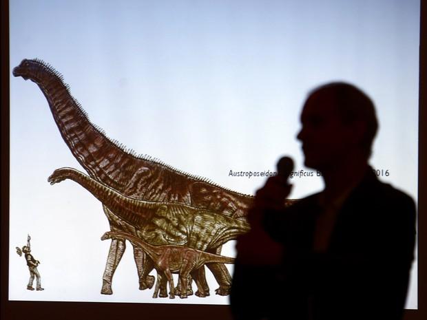 Cientistas anunciam a descoberta do maior dinosauro já encontrado no Brasil durante apresentação no Museu de Ciências da Terra no Rio de Janeiro. O fóssil que levou à conclusão foi encontrado em Presidente Prudente (SP)  (Foto: Fábio Motta/Estadão Conteúdo)