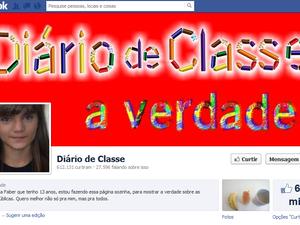 'Diário de classe' tem mais de 600 mil seguidores (Foto: Reprodução/Facebook)