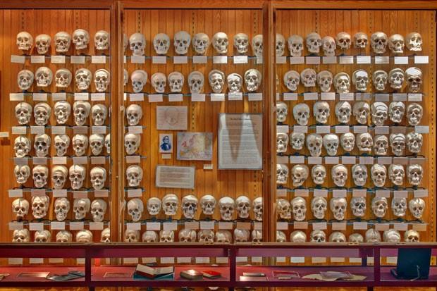 Museu busca pessoas dispostas a 'adotar' um dos 139 crânios que remontam ao século 19 (Foto: George Widman/The College of Physicians of Philadelphia/Reuters)