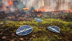 Sensores no formato de folhas com o chip poderiam alertar sobre queimadas (Foto: Divulgação/IBM Research)