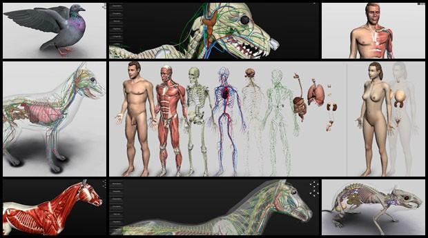 Biosphera: software mostra detalhes em alta definição (Foto: Divulgação)