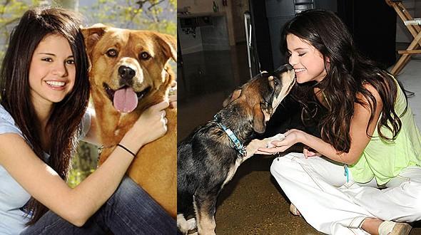 Selena Gomez tem cinco cachorros, todos resgatados de um abrigo (Foto: .)
