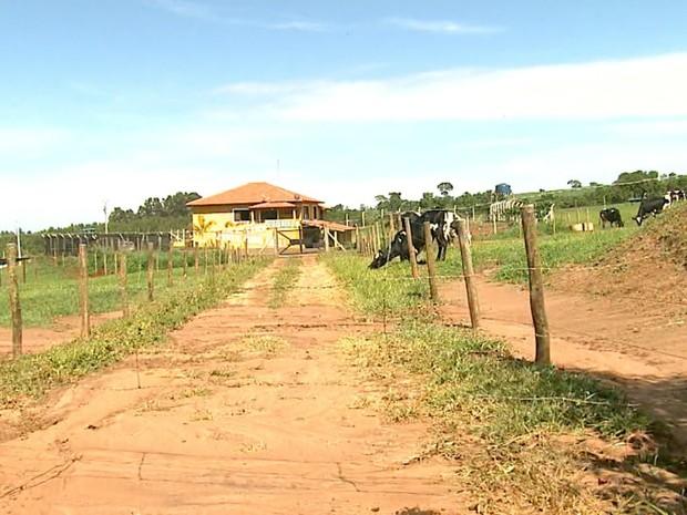 Fazenda em nome de Maria Zuely Librandi foi alvo de mandado de busca e apreensão (Foto: Reprodução/EPTV)