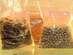 Alimentos funcionais  (Foto: Reprodução/ Tv Integração)