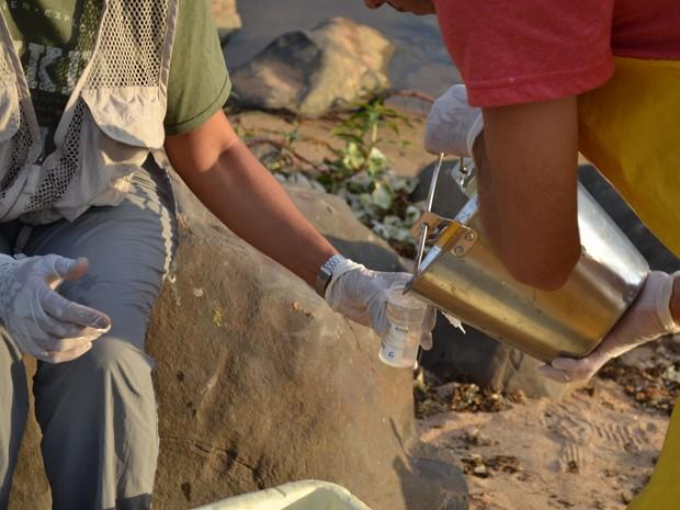 Empresa contratada pela Samarco recolhe material no Rio Doce, em Baixo Guandu (Foto: Viviane Machado/ G1)