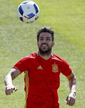 Fabregas treino Espanha Eurocopa (Foto: EFE)