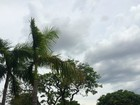 Inmet prevê fortes chuvas no fim de semana em áreas isoladas de MS