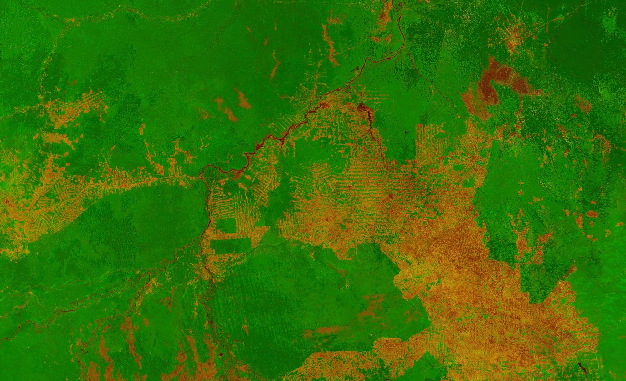 Áreas desmatadas são aquelas que aparecem em marrom (Foto: ESA/VITO)
