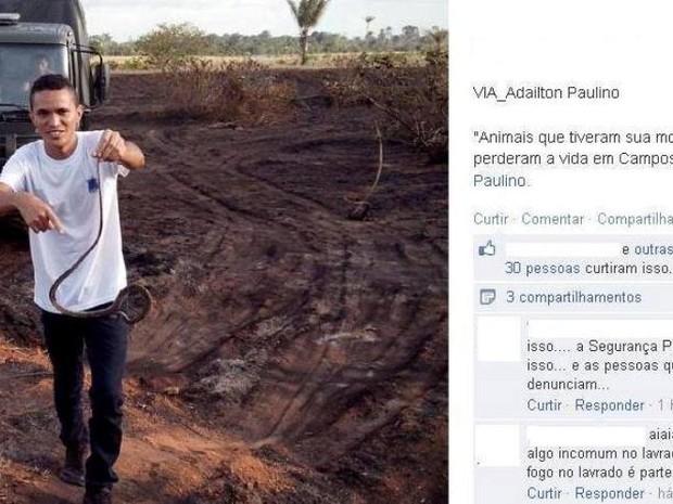 Gerente do Prevfogo mostra cobra encontrada morta devido à queimada (Fot Adailton Paulino/Arquivo pessoal)