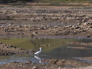 Represa do Paraitinga, localizada em Salesópolis, também surpreende por pontos em que está seca (Foto: Edson Martins/Jornal O Diário)
