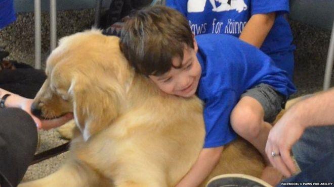 Menino com autismo que não pode ser tocado faz 'amizade instantânea' com cão terapeuta.
