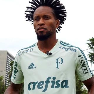 Palmeiras tem nova camisa de treino para 2017  veja a foto do uniforme 1d68648cc0ade