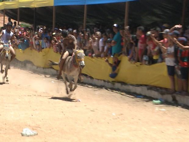 Corrida de Jegues na cidade de Bom Jesus, no Sertão da Paraíba (Foto: Reprodução/TV Paraíba)
